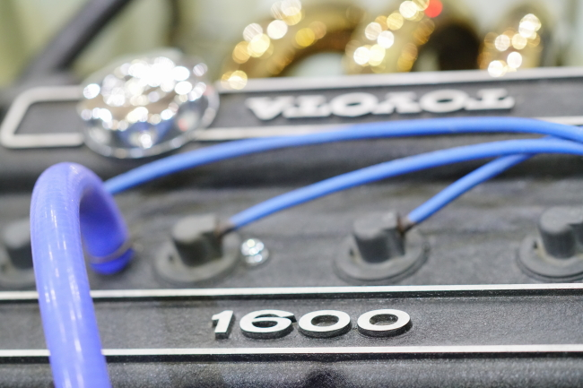 DSC00905-1+.JPG