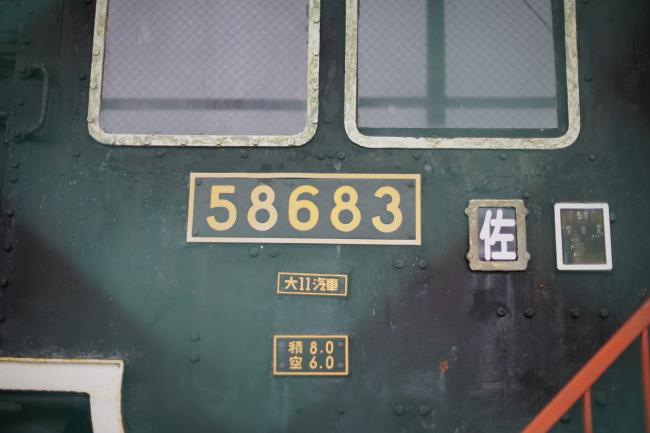 DSC03903-1+.JPG