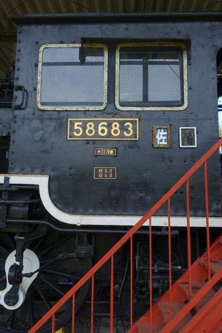 DSC07535-1.JPG