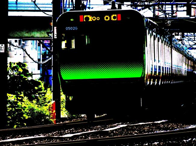 DSC08226+1.JPG
