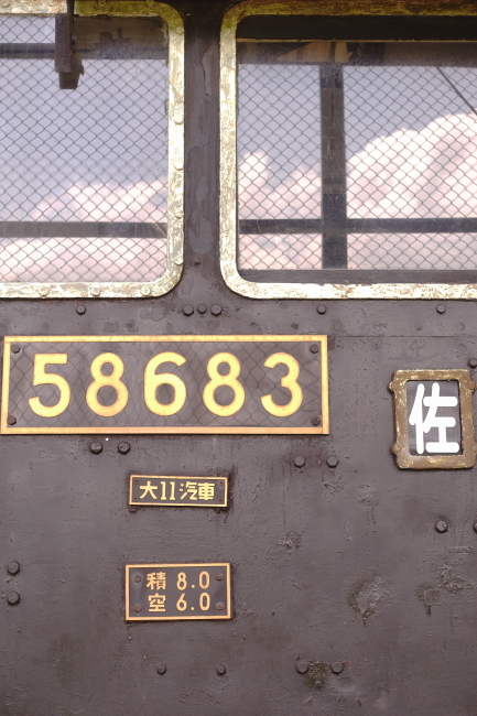 DSC09739+1.JPG