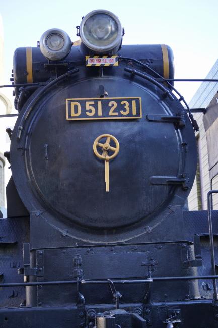 DSC09789-1+.JPG